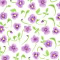 すみれ色のひらめき【Pavish Pattern】