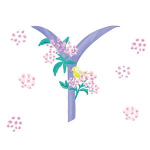 Pavishイニシャルシリーズ 黄色い鳥【Y】