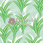 幸運の木ドラセナのパターン グリーン【Pavish Pattern】